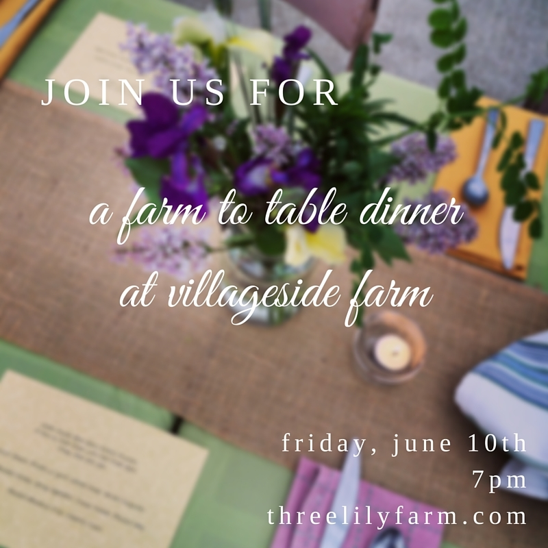 Farm to Table Dinner at Village Farm