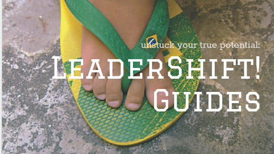 The Ultimate Guide to Facilitating LeaderShifts!