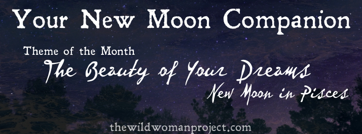 New Moon Companion {The Beauty of Your Dreams}